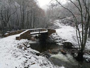 Puente de la Veneira
